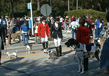 Dog parade in DeLand (Wikipedia and Mwanner)