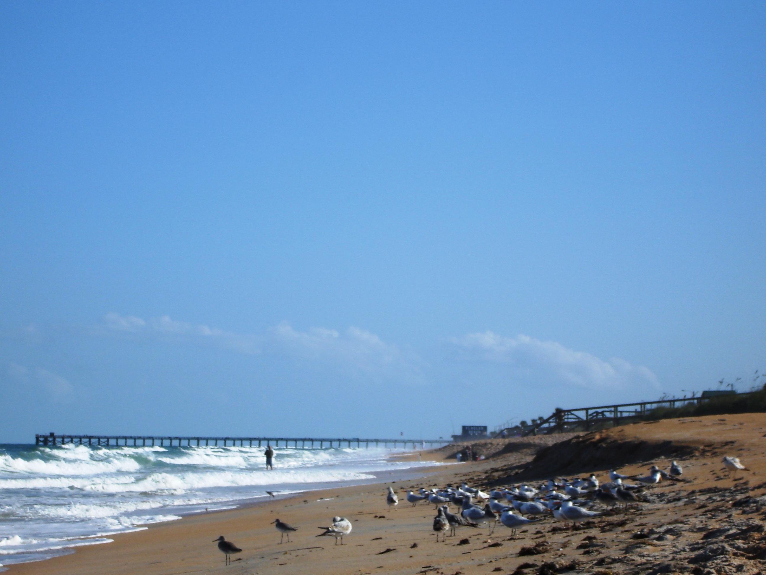 Flagler Beach retirement communities