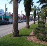 Venice retirement communities
