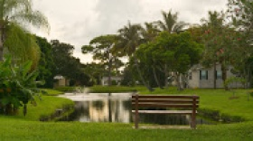 The Meadows Fl 55 Active Adult Community